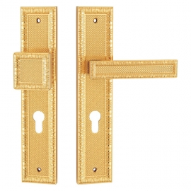 Exterior Door Handles Gold Color With Square Knobs