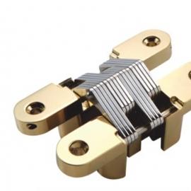 28x118mm Gold Polished Zinc alloy Concealed Hinges
